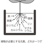 植物が必要とする元素。どれか一つでも欠けると植物が正常に育たた無い