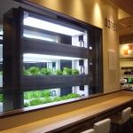 サブウェイ野菜ラボ丸ビル店