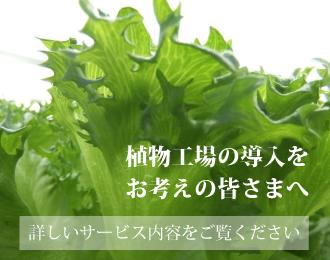 植物工場の導入をお考えの皆さまへ